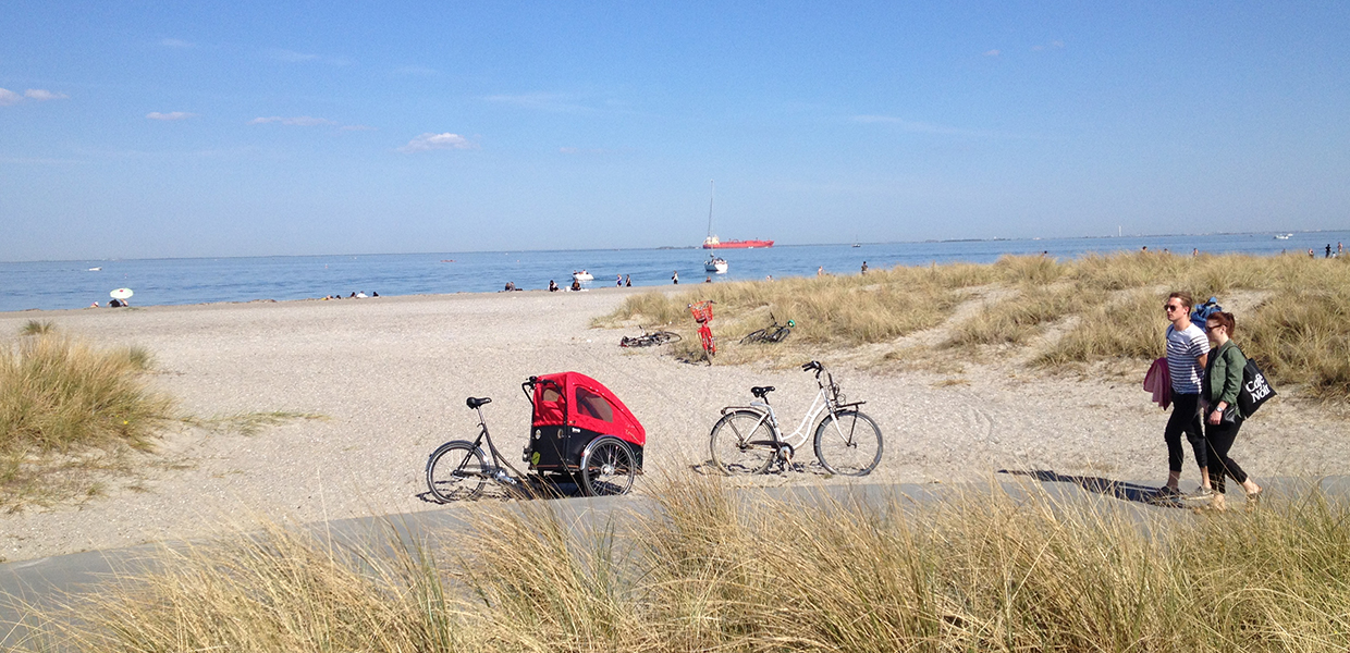 cargo bike on the beach